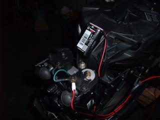 20081005-01.JPG