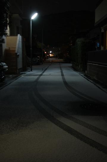 20110116-07.jpg