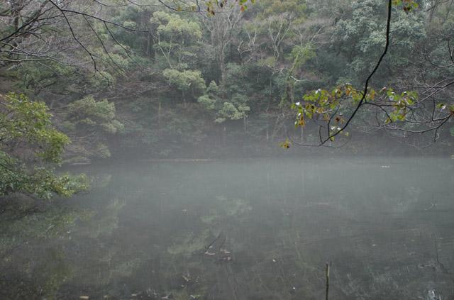 20120318-02.jpg
